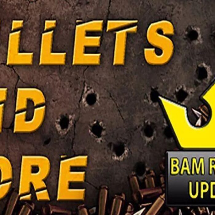 Bullets And More VR